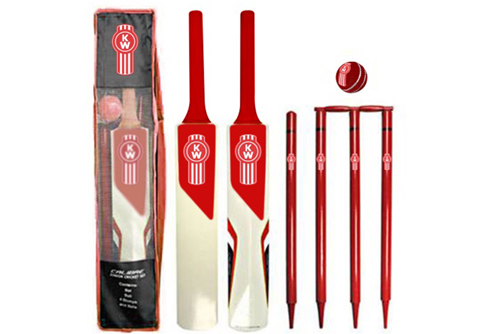 cricket bats and balls branded with logo
