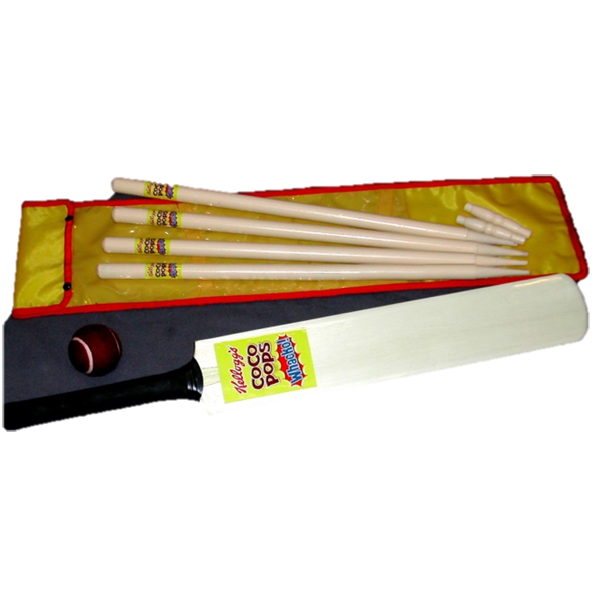 cricket set bat and stumps