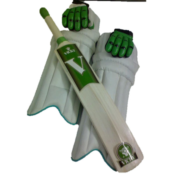 cricket set with pads