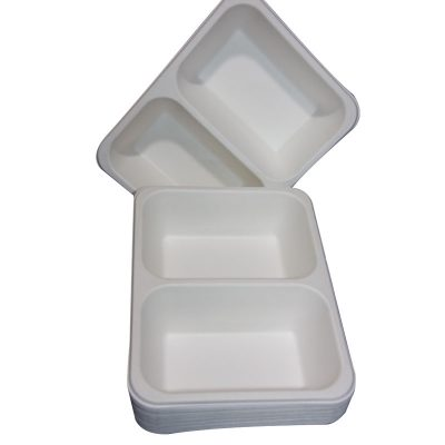 trays 2 compartment recycled biodegradable
